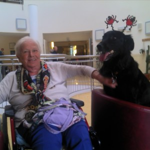 pet therapy halloween