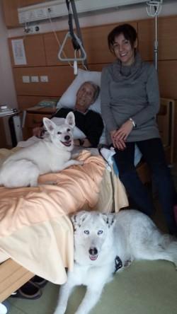 pet therapy stanza degenza