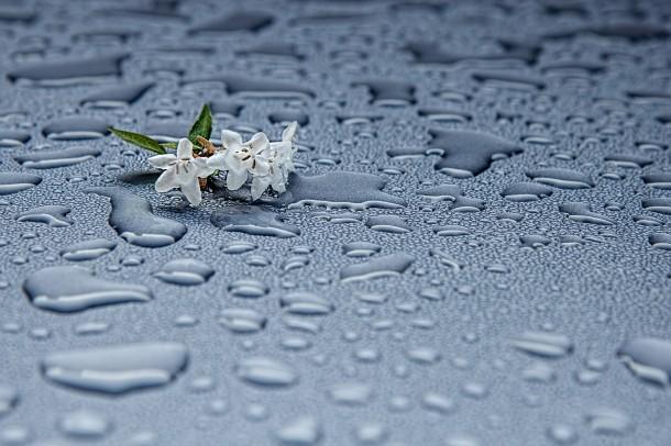 rain-drops-412465_1920