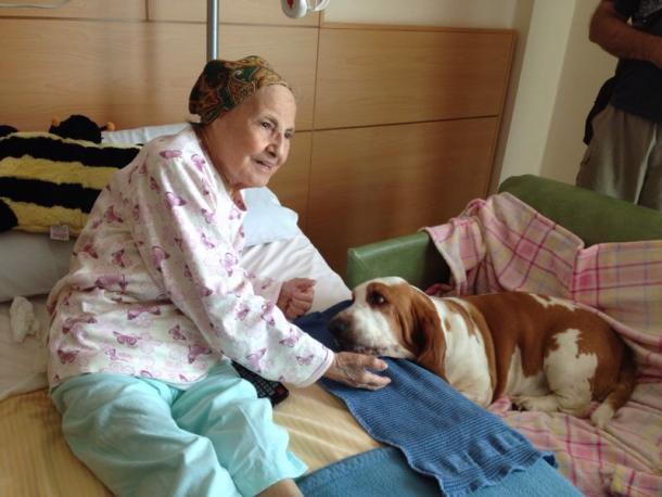 Un ricordo della pet therapy